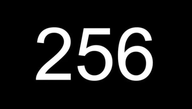 嵐 コール 256 意味